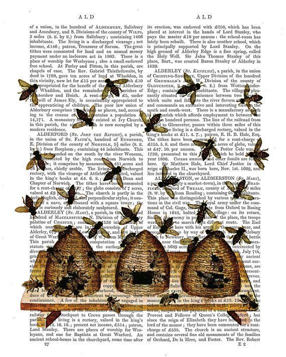 Honeybees Vintage Beehives Beehive Honey Bee Bee Print Kitchen
