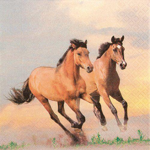 Serviette Wild Horses