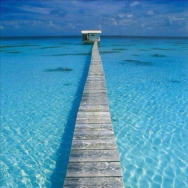 Tahití, Polinesia Francesa #Polinesiafrancesa #turquesa #Tahití http://www.pandabuzz.com/es/imagen-ensueno-del-dia/puente-tahití-polinesia-francesa