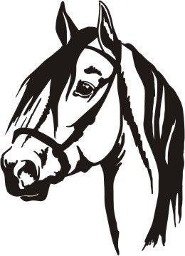 window car vehicle trailer paso horse vinyl decal pinterest rh pinterest co uk horse head clipart png horse head clipart png