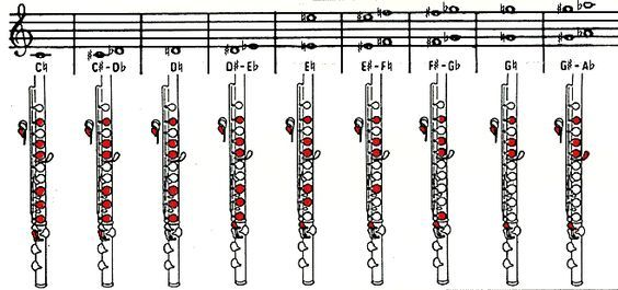 Kuvahaun tulos haulle flute finger chart for beginners