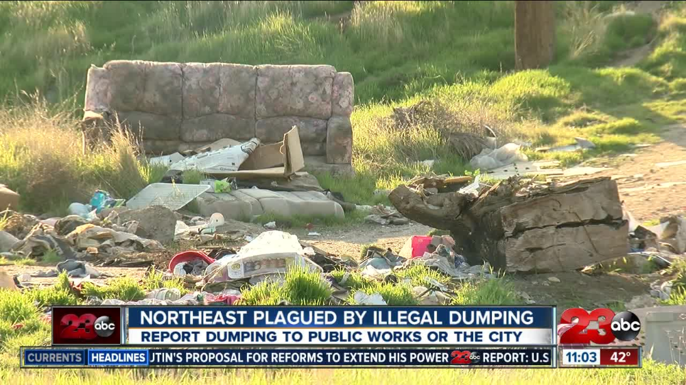 Illegal dumping a problem in Northeast