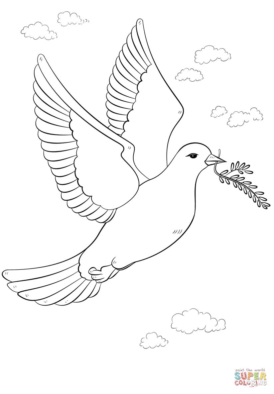 Disegno Di Colomba Della Pace Con Ramoscello Dulivo Da Colorare