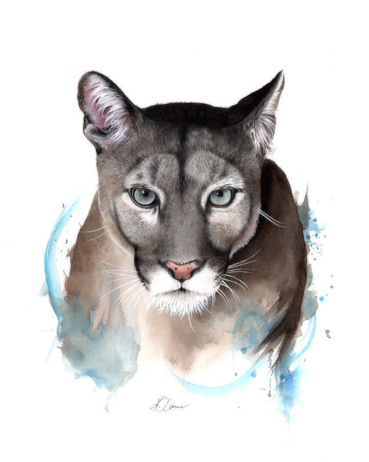 Descartar Clasificación SIDA  Puma - Watercolour and Pencil | Puma dibujo, Dibujos de pumas, Animales  acuarela