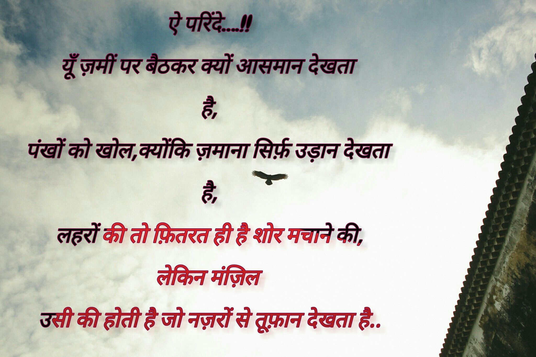 Quotes Sky Hindi Bird Life Fly Love Birds Quotes Bird Quotes Quotes