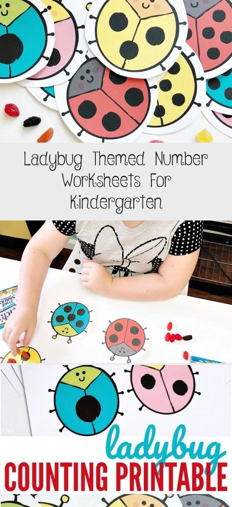 Ladybug Themed Number Worksheets For Kindergarten In 2020 Kindergarten Worksheets Kindergarten Toy Kindergarten [ 1635 x 750 Pixel ]