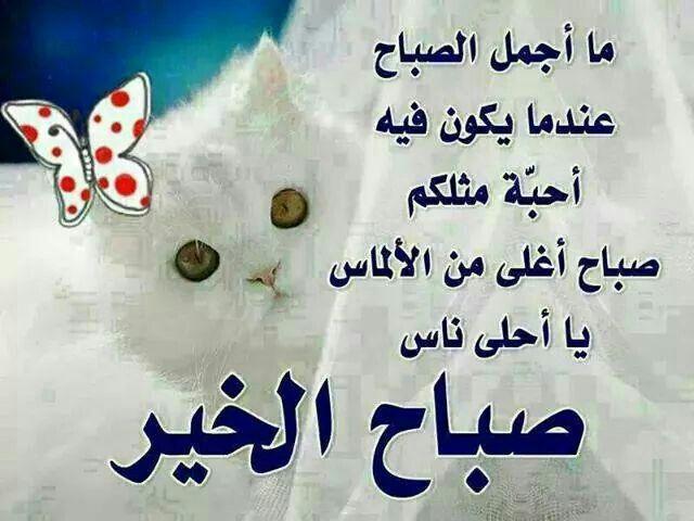 صباح الغلا Lalic Good Morning Calligraphy