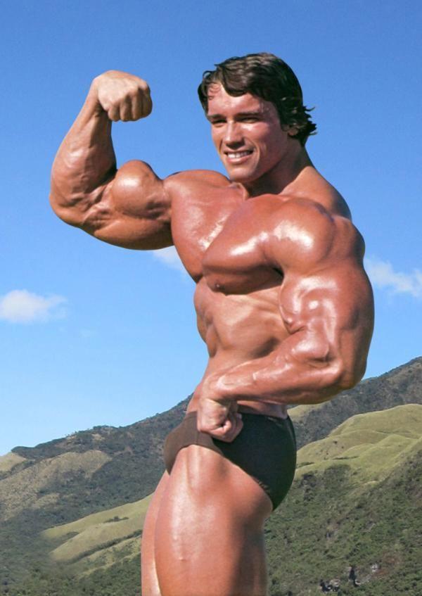 Arnold Schwarzenegger, Austria (30 July 1947) u003e USA, height 6-foot-2 - new arnold blueprint app