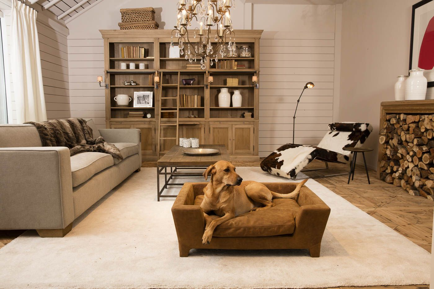 Flamant Mobili ~ Exclusive dog bed massimo brogan brown lord lou @ flamant