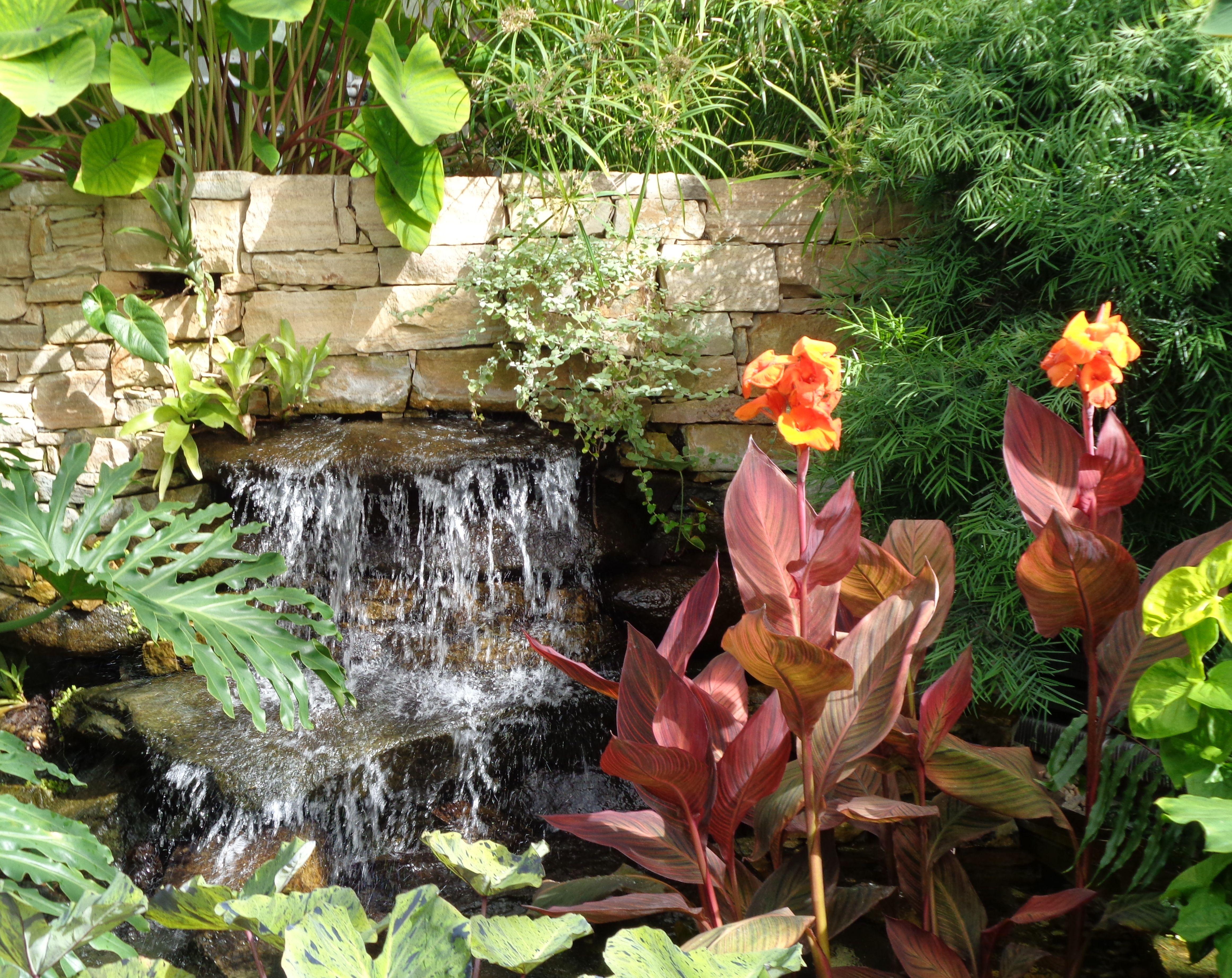 f5c744175b67e9a1ca1f1a5f312bd149 - Brookside Gardens Conservatory Wheaton Md 20902