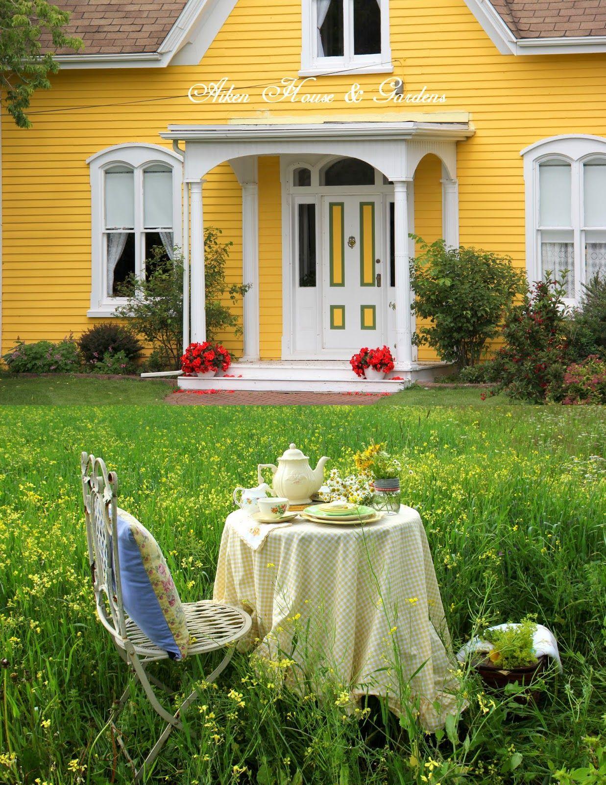 Aiken House & Gardens Sunshine Yellows