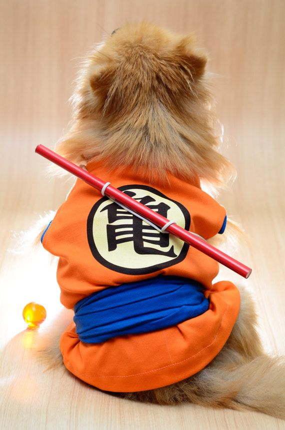 Hey, I found this really awesome Etsy listing at https://www.etsy.com/listing/188571302/dragon-ball-and-one-piece-dog-clothing