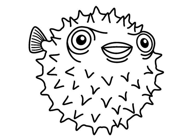 Dibujo para colorear pez erizo | EBV | Pinterest | Colorear y Dibujo