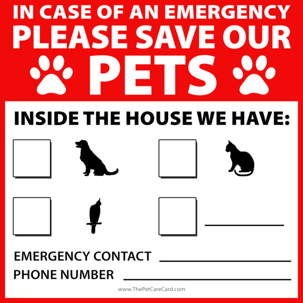Emergency Pet Sticker Pet Care Pets Dogs