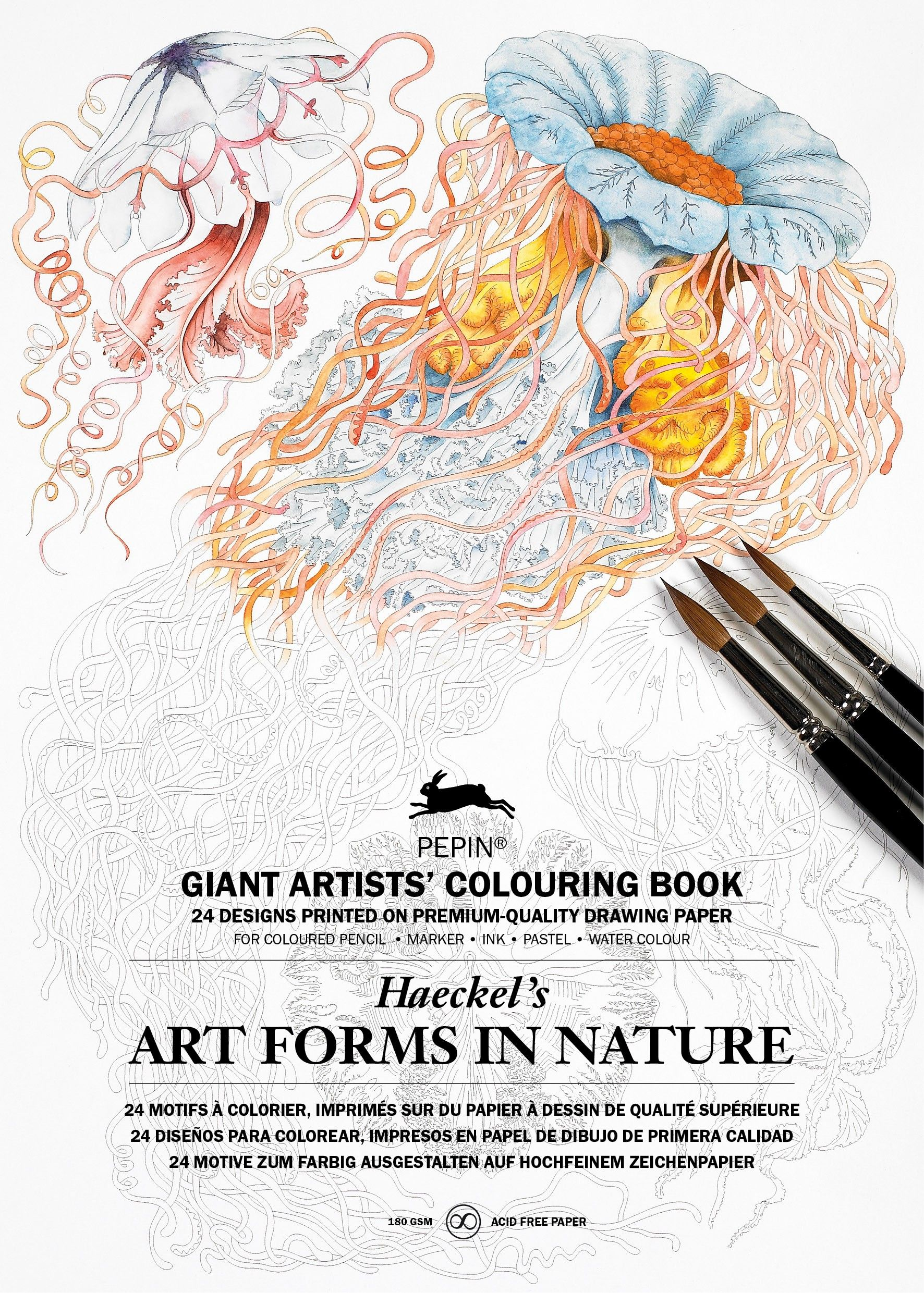 Coloring books for artists - Artforms In Nature Haeckel A3 K Nstler Malb Cher Giant Artists Colouring Book Amazon