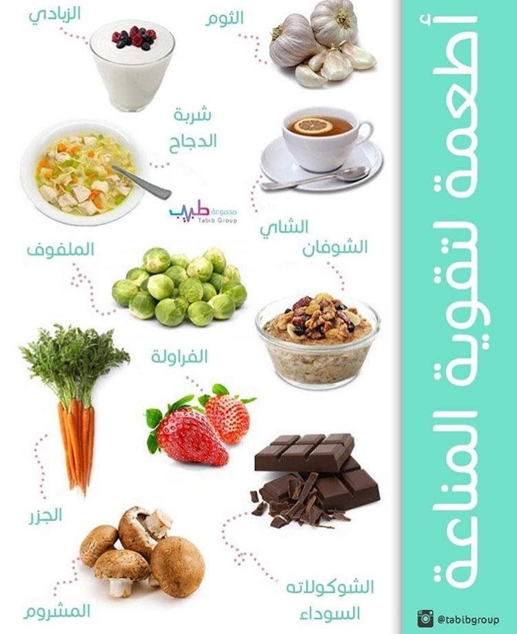 Pin By Bahbouh Nassim On أعشاب وفواكه Food Animals Dog Food Recipes Food