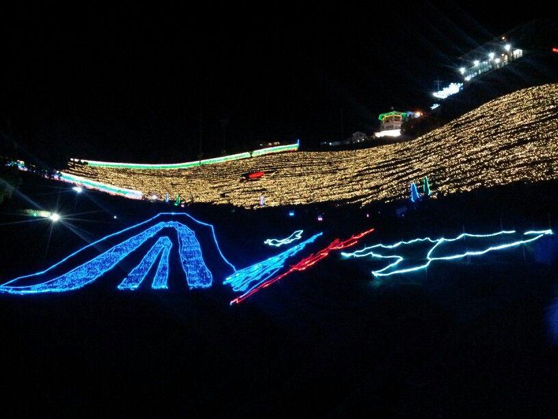 보성빛축제