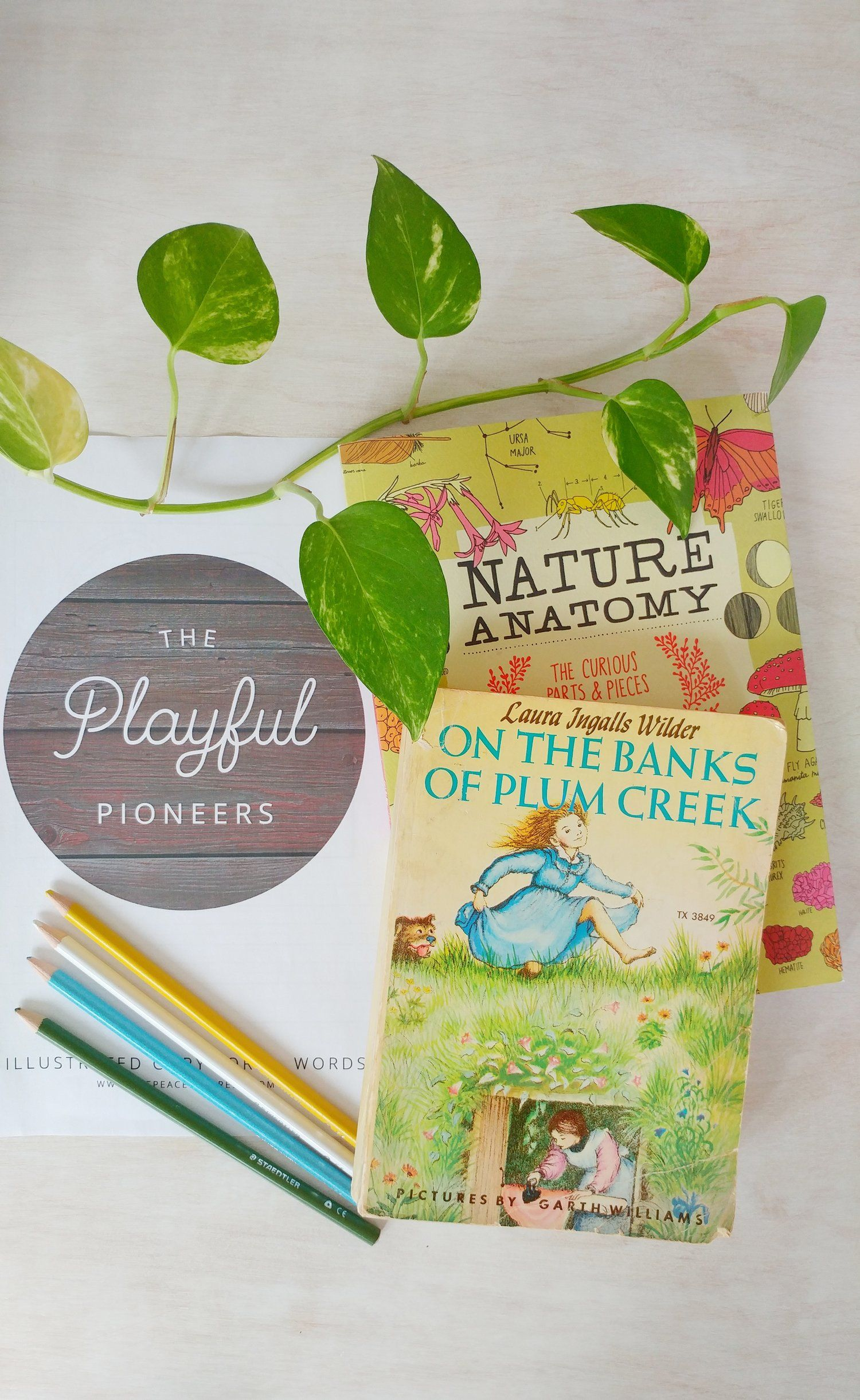 Photo of Learning With The Playful Pioneers-A Guest Post — THE PEACEFUL PRESS