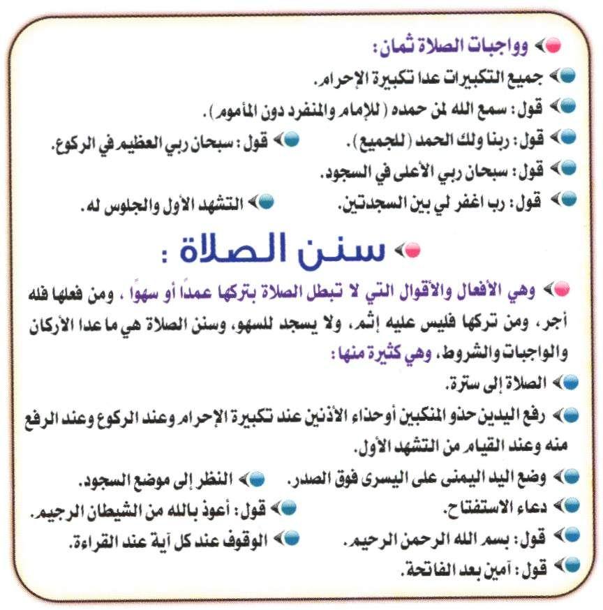 الصلاة عمود الدين أركان الصلاة شروط الصلاة واجبات الصلاة سنن الصلاة مبطلات الصلاة مكروهات الصلاة Islam Beliefs Islamic Quotes Islam Quran