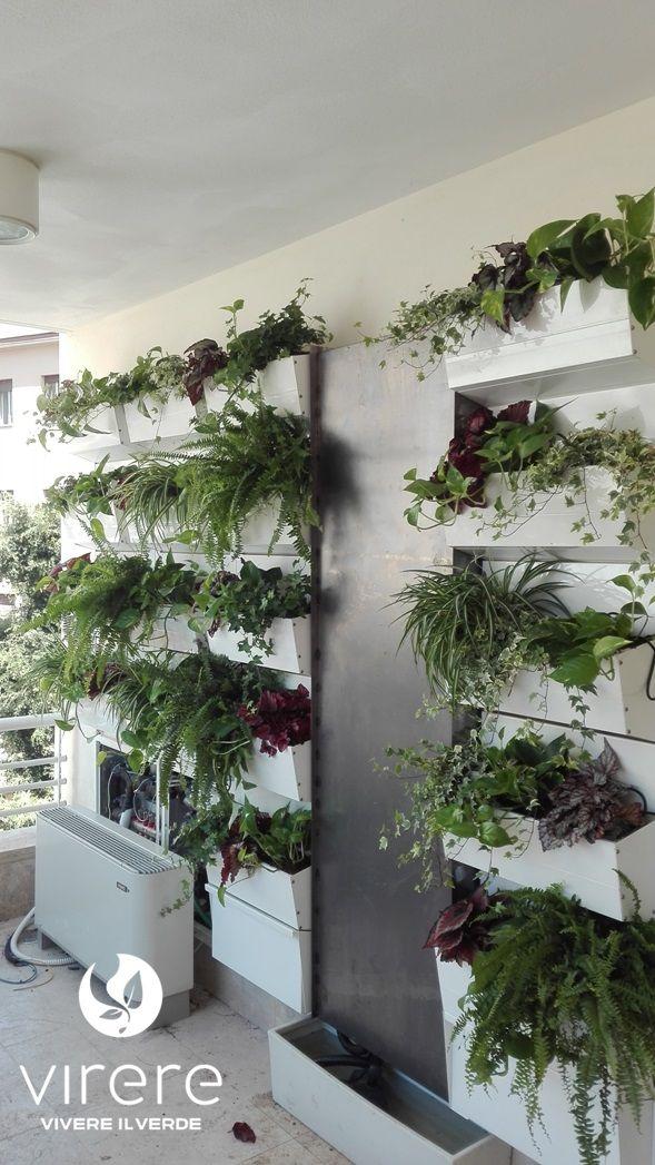 Dona un aspetto unico alle pareti di casa e del tuo ufficio. Le pareti verticali verdi con ...