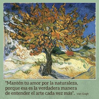 Frases De Van Gogh Van Gogh Arte Y Frases