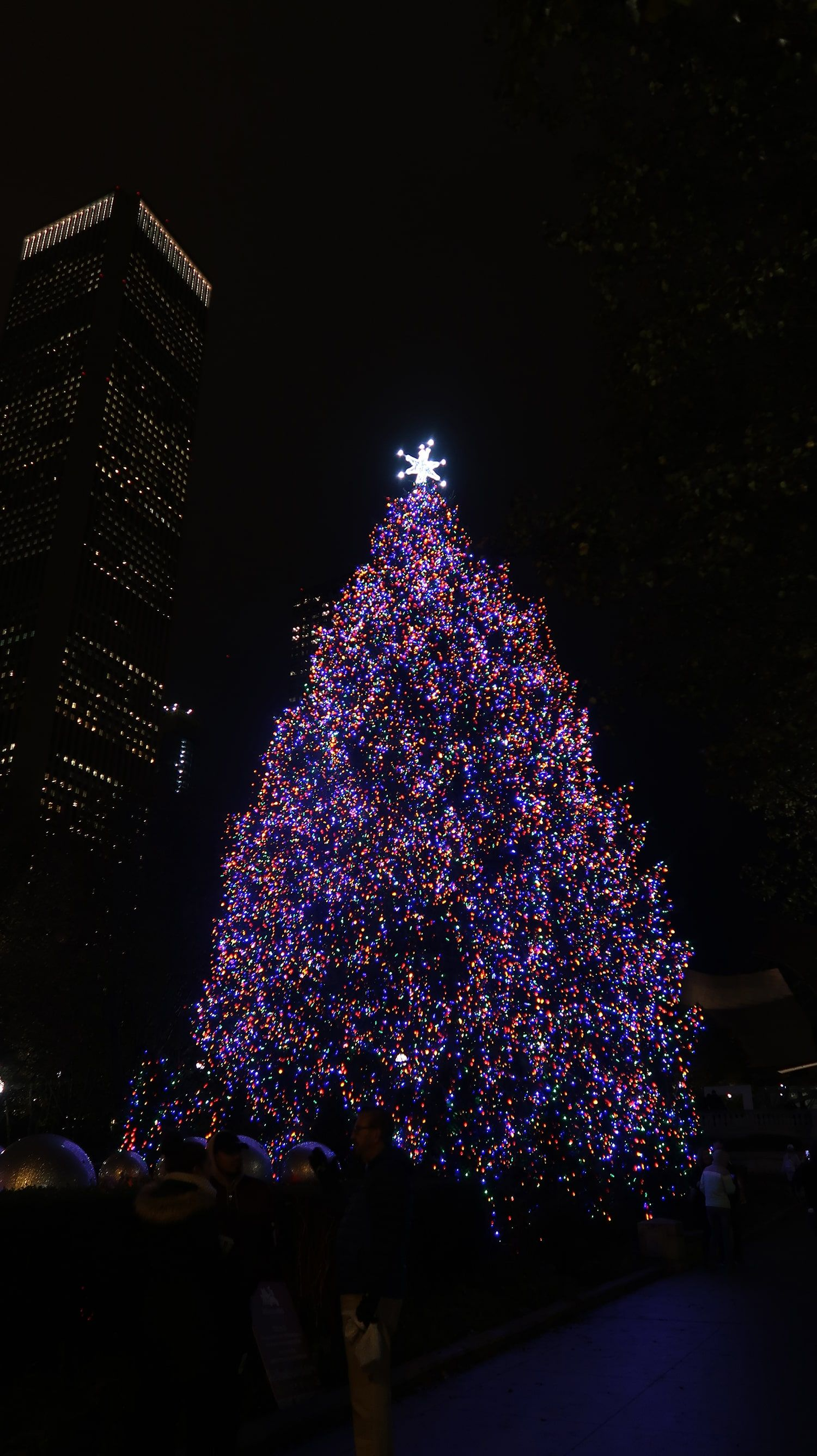 5 Must See Christmas Trees In Downtown Chicago In 2020 Downtown Chicago Christmas Tree Downtown