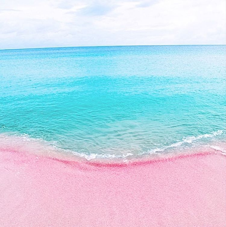 Pink sand beach bahamas beautiful places pinterest for Bahamas pink sand beaches