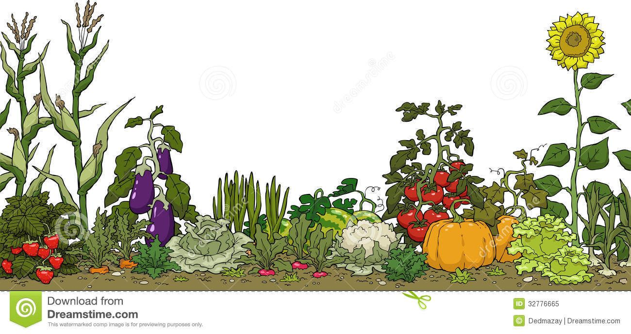 Vegetable garden graphic - Vegetable Garden Graphic With Tomato Garden Clipart Vegetable Garden Bed On A