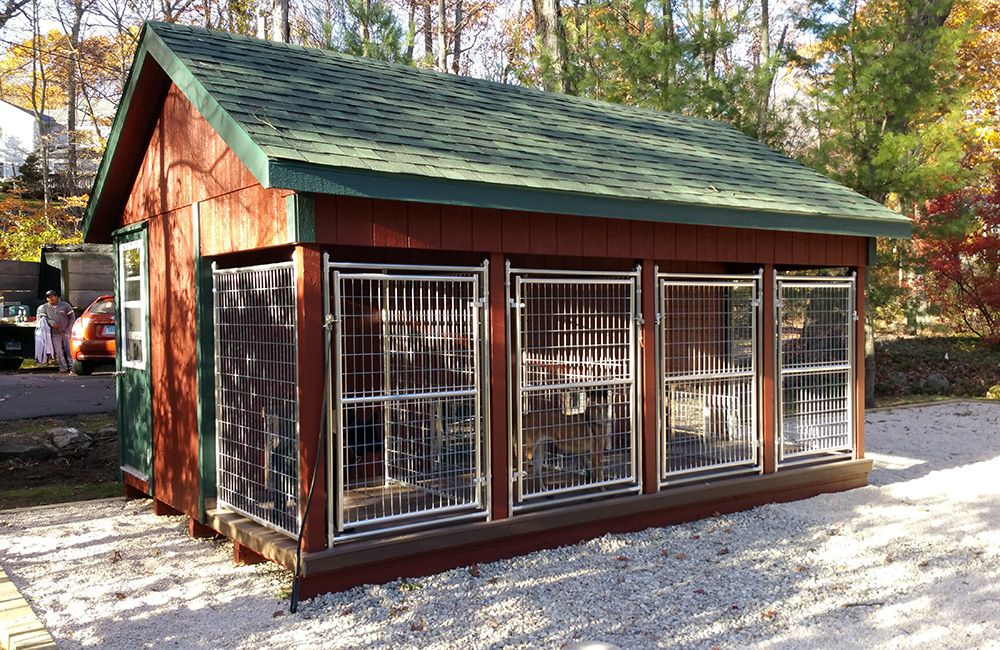 12x16 4 Dog Prebuilt Kennel Is Highly Recommended By K9 Trainer And Vet Dog Kennel Designs Dog Kennel Dog Kennel Outdoor