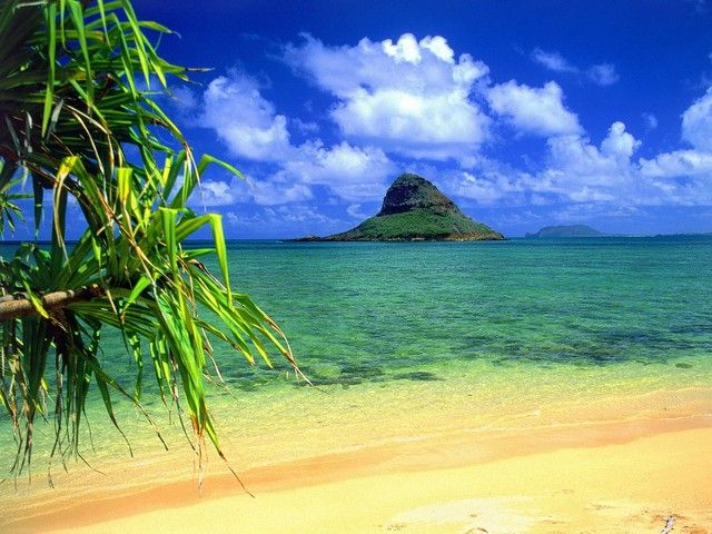Chinaman's Hat  on Oahu, #Hawaii I lived on Oahu from 1968-1976. Every weekend I was at the beach #snorkling looking for #shells.