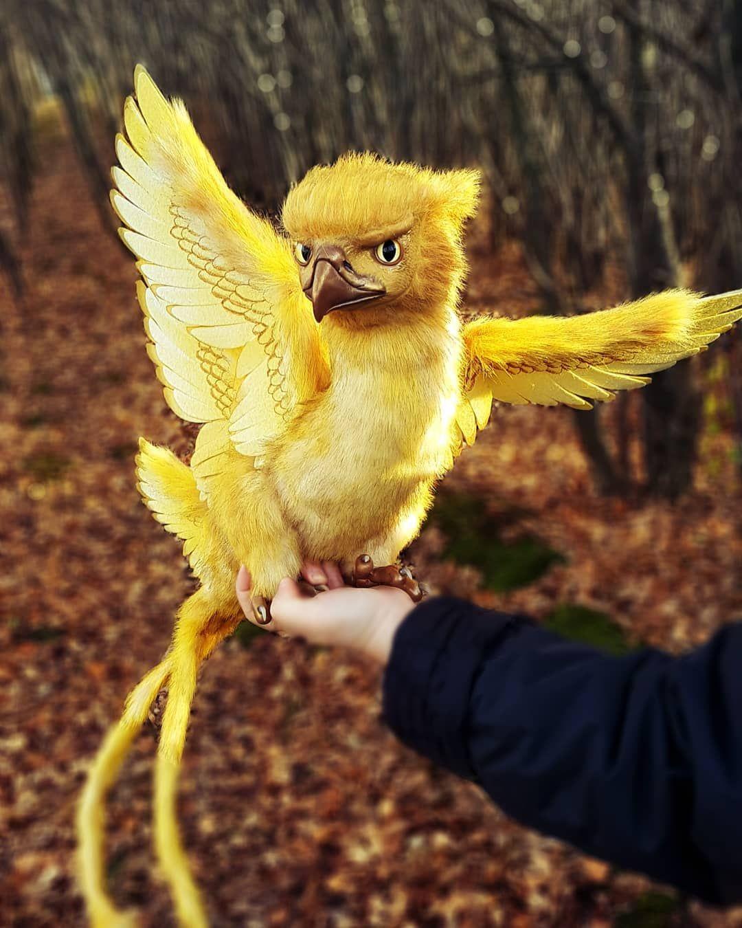 Thunderbird ist endlich vorbei, es wurde auf Bestellung gefertigt. Seine sechs Flügel brachten mir, …
