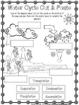 Water Cycle Freebie | Science | Eğitim, Sınıf, Hayat bilgisi