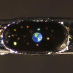 Micro sculpture of the Earth in the eye of a needle!!