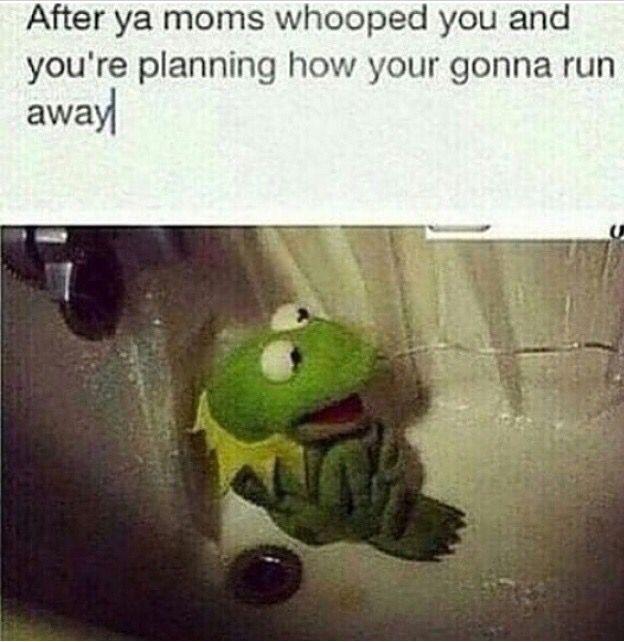 Pin En Kermit Da Frog