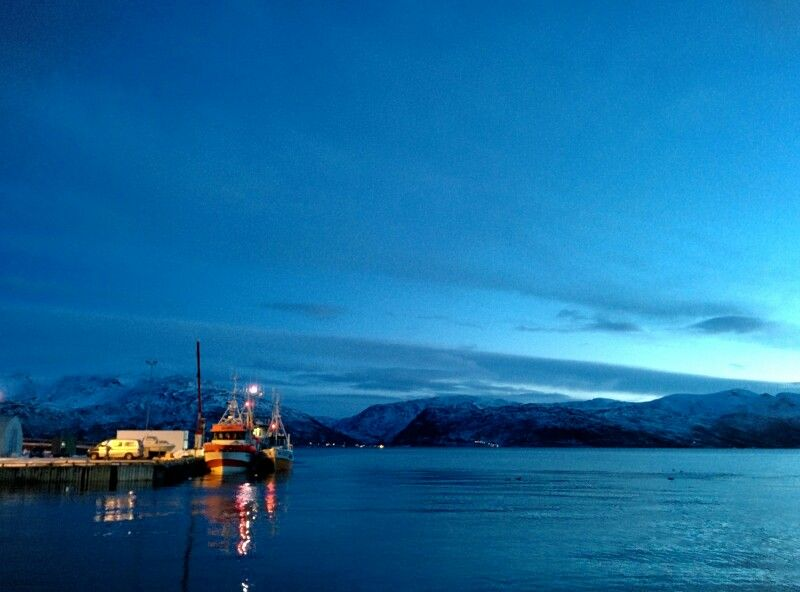 Early morning out on the fjords - Tromsø/Norway