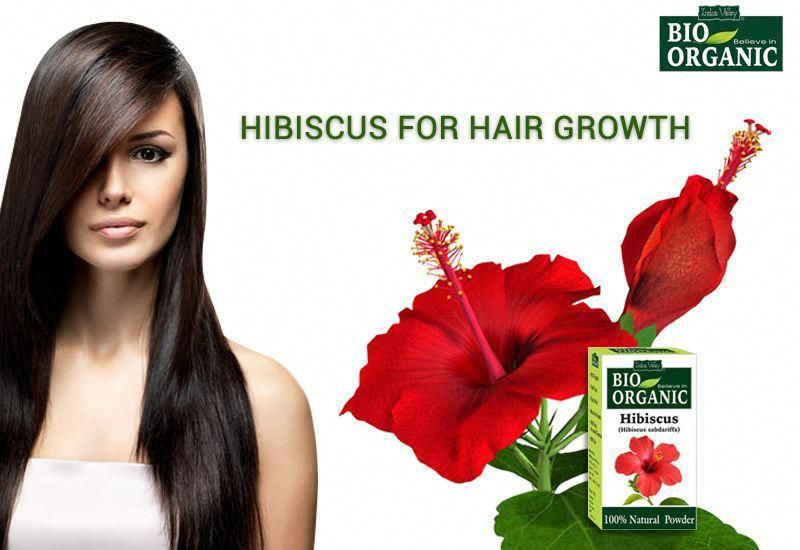 Hibiscus Powder Is Best Ayurvedic Herbs For Hair Growth And Also A Complete Solution For The Differ Herbs For Hair Growth Herbs For Hair Hair Mask For Dandruff