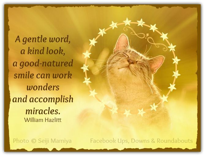 A gentle word, a kind look, a good-natured smile can work wonders and accomplish miracles. William Hazlitt