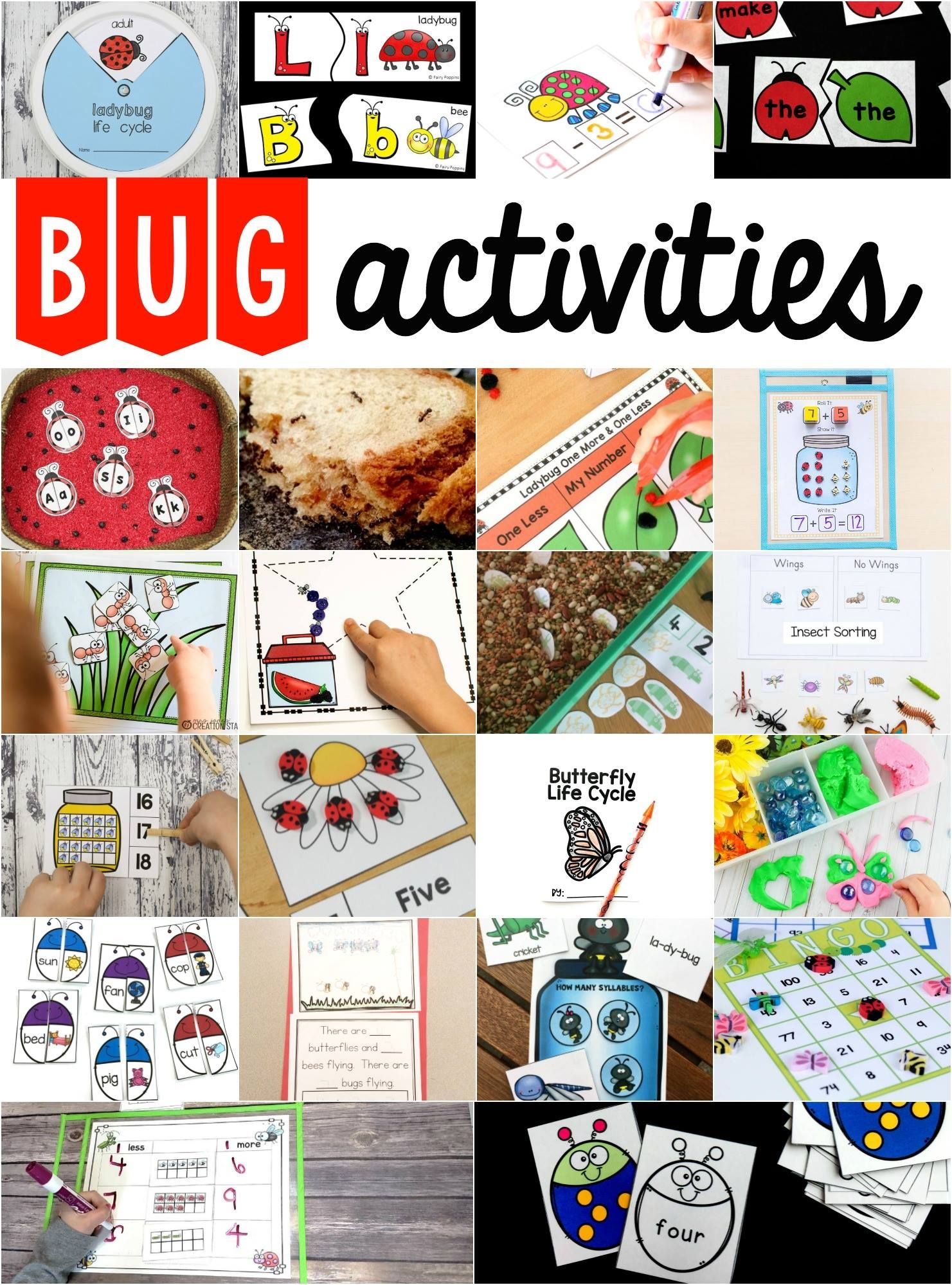 Bug Subtraction Cards