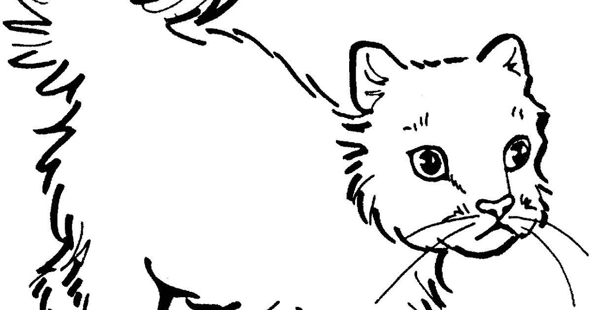 Disegni Di Gatto Per Disegni Di Cani E Gatti Per Bambini Designzip
