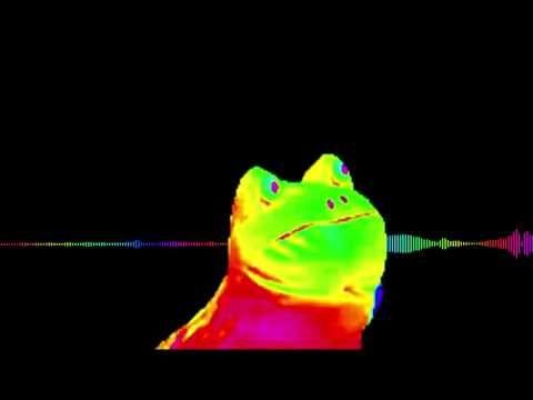 f5cfce15bb62ff221340fb423b999713 the rainbow frog dance two youtube funny cat meme pinterest