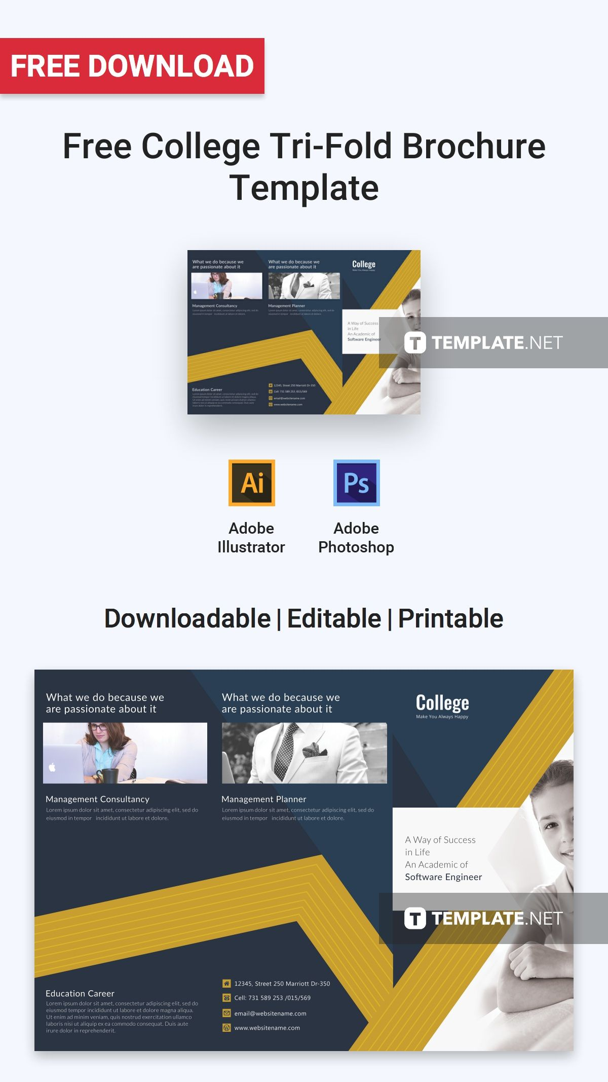 Free College TriFold Brochure Brochure, Trifold