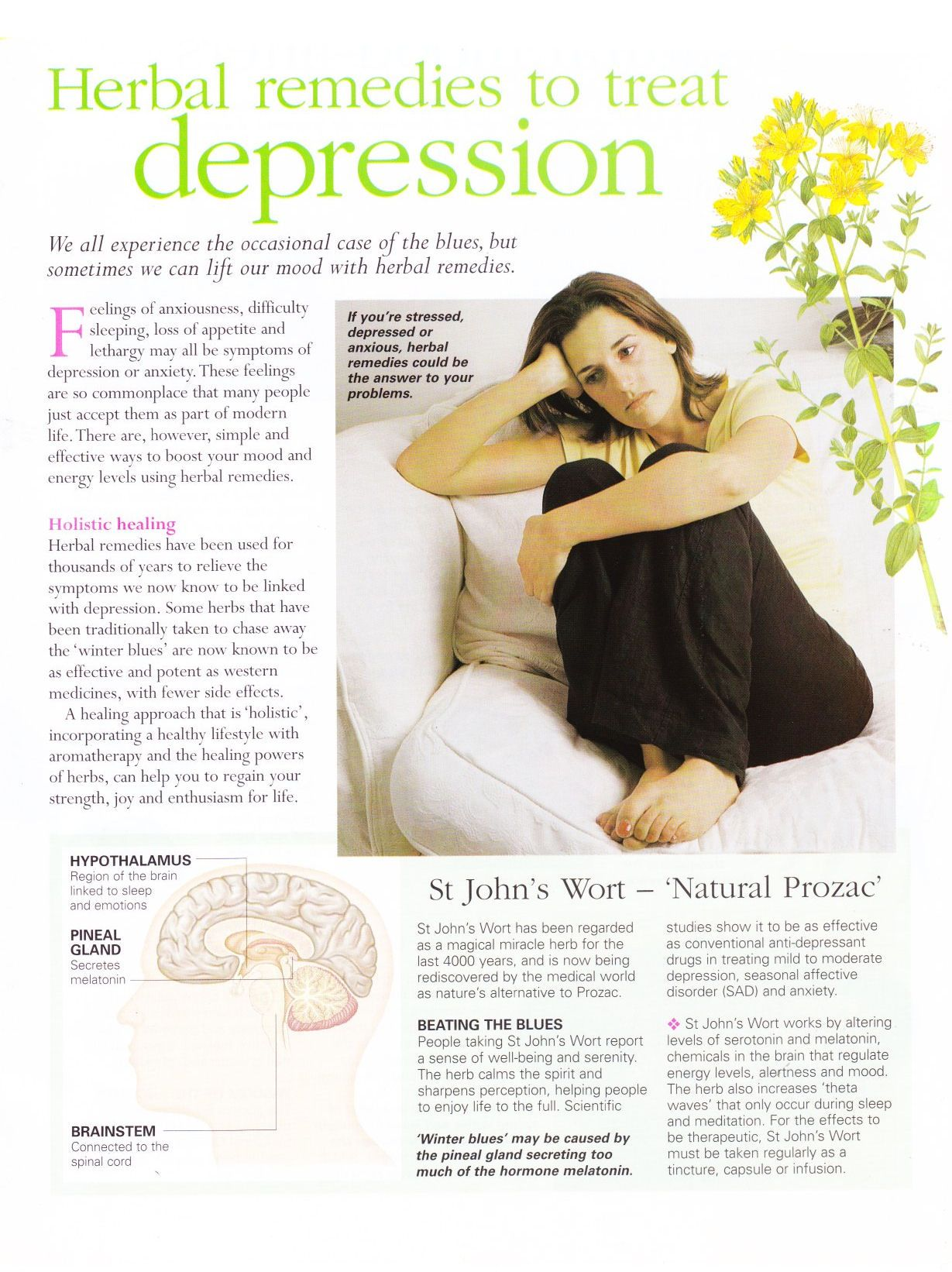 Herbal remedies to treat depression