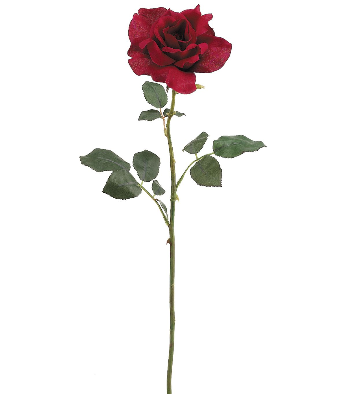 26 39 39 american beauty rose spray red26 39 39 american beauty for Rose with stem tattoo designs