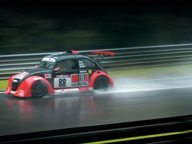 19++ Bug racing information