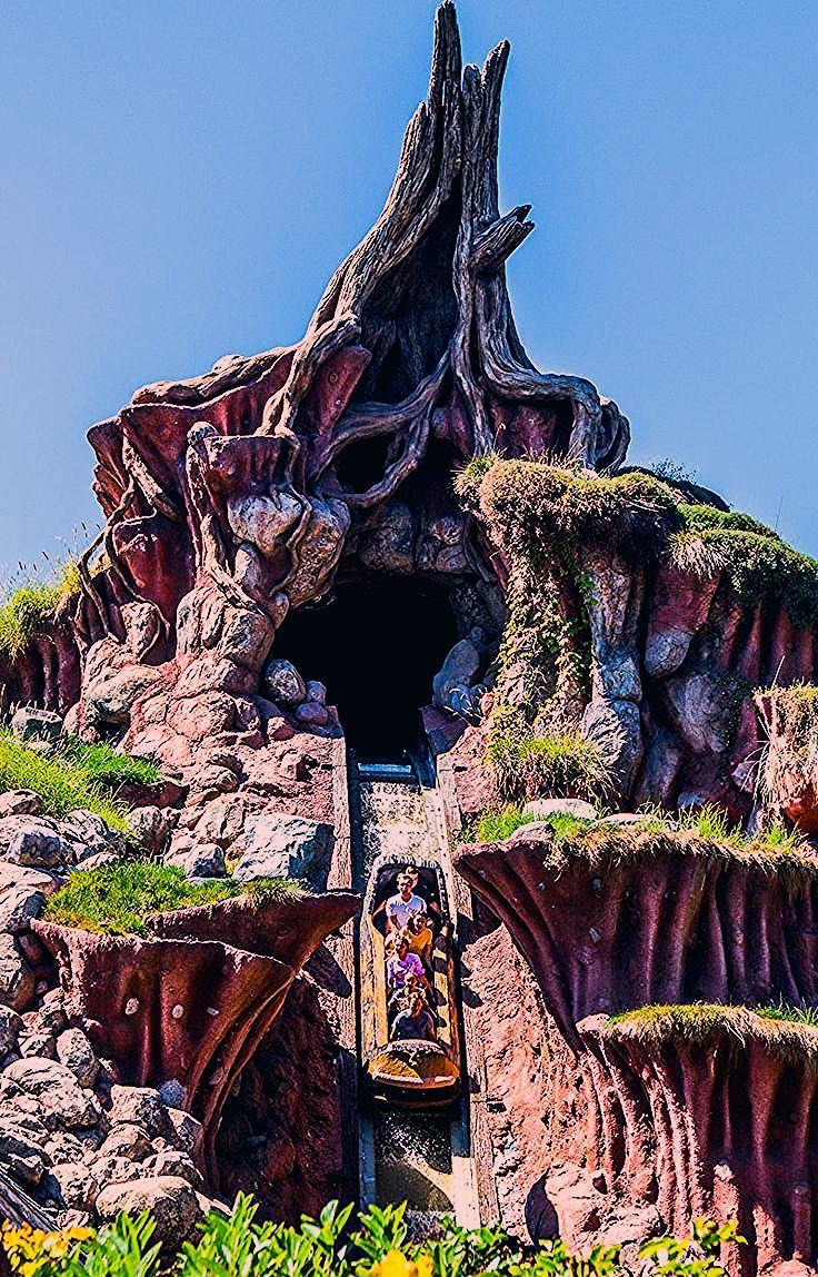A Dream Disneyland Trip (Things to do in Disneyland, Anaheim)