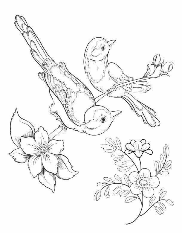 Bird And Flower Nature Scene Coloring Page Coloring Pages