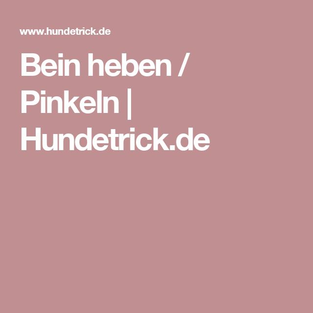 Bein heben / Pinkeln | Hundetrick.de