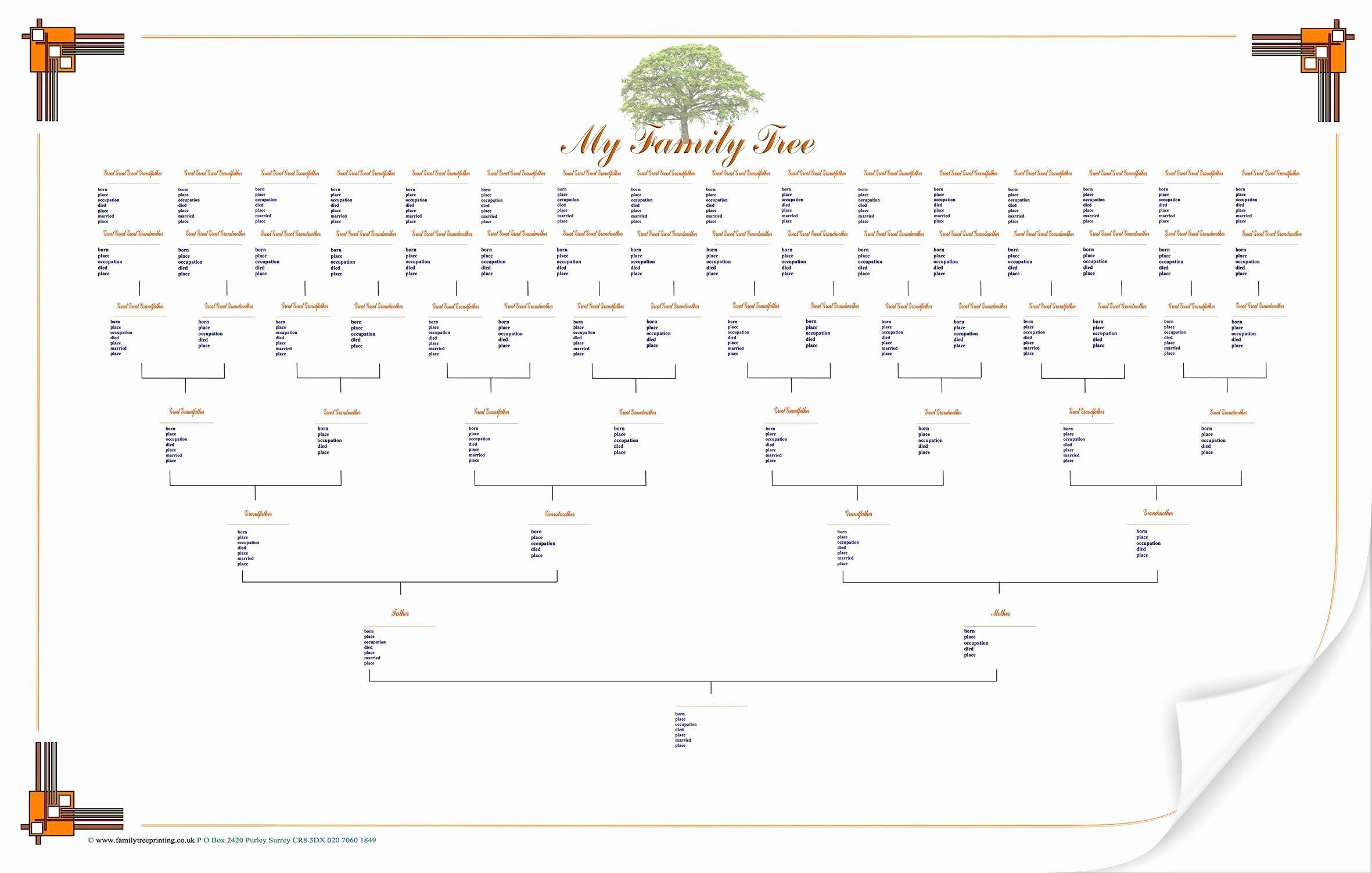 Blank Family Tree Template Beautiful Blank Family Tree Chart