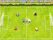 Pet Soccer Flash Play Free Flash Games Online At Gamesbox Com Soccer Online Games Games