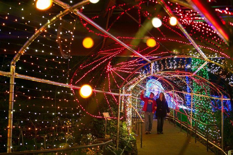 Related image Holiday lights display, Christmas town